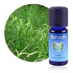 Estragon - Artemisia dracunculus - huile essentielle