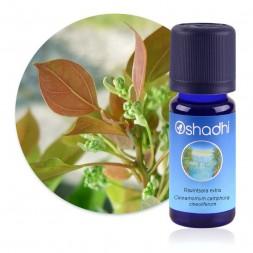 Ravintsara extra-sup - Cinnamomum camphora cineoliferum / Biologique - huile essentielle 5 ou 10ml