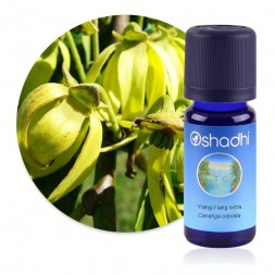 Ylang-Ylang extra-supérieur - Cananga odorata / Biologique - huile essentielle