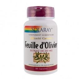 Feuilles d'olivier 250 mg