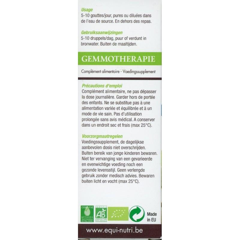 Cornouiller bourgeons bio