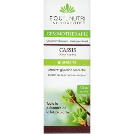 Cassis bourgeons Bio
